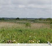 Residents are understandably overjoyed to have traded the former landfill for a new beauty spot