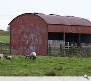 This dilapidated hay shed has become an unlikely attraction