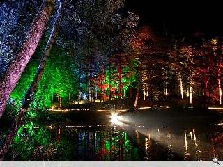 Enchanted Forest festival ends on a bright note