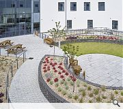 Landscaped courtyards will help to ward off an institutional feel