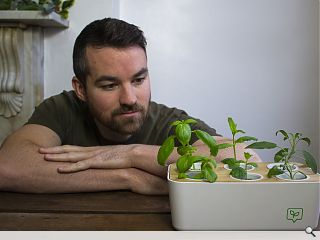 Architect plants seed of a homegrown food revolution