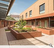 Courtyards maximise natural daylight and outdoor amenity space