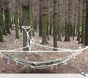'Suspended Meadow' adds another string to the humble hammock