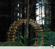 Sapherson contributed to this forest-bound fairy light wheel
