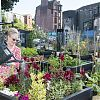 Stalled Spaces initiative delivers outdoor gym, wildflower meadow & pop-up market