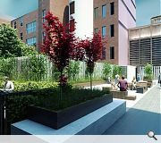 A central amenity deck will provide valuable outdoor amenity space for tenants
